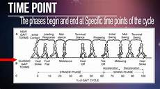 Gait Cycle Normal Gait Cycle Time Point Youtube