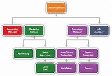 Firm Organization Chart Reading The Organization Chart And Reporting Structure