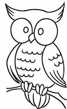 owl with bulging coloring pages owl coloring