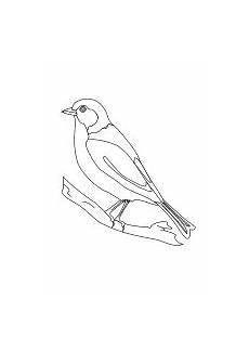 Malvorlage Vogel Kinder Malvorlage Vogel Malvorlagen Vogel Vorlage Und