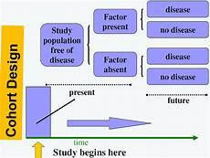 Cross Sectional Study Design Examples Study Design Observational Study Designs Cohort Study