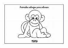 Mono Para Colorear Dibujos De Animales Salvajes Para Colorear