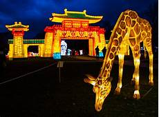 Chinese Lights New York Winter Lantern Festival In New York