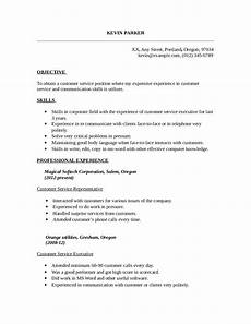Resume Template Customer Service 2020 Customer Service Resume Fillable Printable Pdf