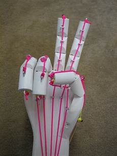 What To Do A Project On Science Fair Articulated Hand