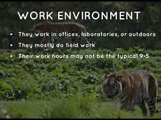 What Do Wildlife Biologists Do Zoologist And Wildlife Biologist By Elsa Doherty