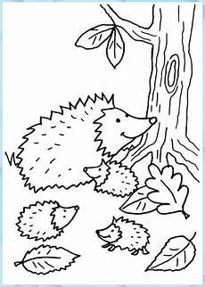 igel igelfamilie zum ausmalen pine cone crafts for