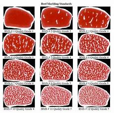 Steak Grade Chart Flecks Specks Streaks And Ribbons The Key To A Well