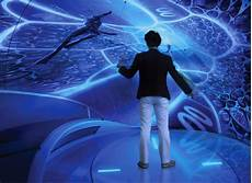 Full Immersion Virtual Reality Designers Developing Virtual Reality Cocoon