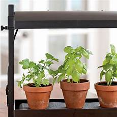 Basil Grow Light Best Herbs For Growing Indoors Gardener S Supply
