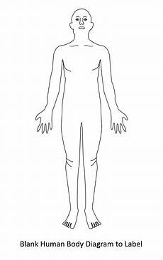 Blank Body Chart Human Body Diagram