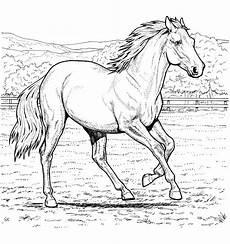 malvorlagen pferd auf einem bauernhof