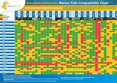 Red Shark Compatibility Chart Our Pdf Library Of Free Aquarium Fish And Other