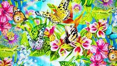 Mariposas Y Flores Pintura De Flores Y Mariposas 1920x1080 Fondo De