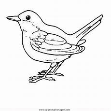 Malvorlage Vogel Auf Ast Singvogel 02 Gratis Malvorlage In Tiere V 246 Gel Ausmalen