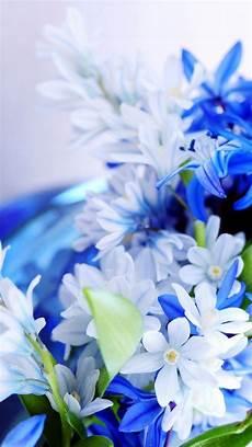 iphone x flower wallpaper hd kumpulan iphone x flower wallpaper hd wallpaper baju