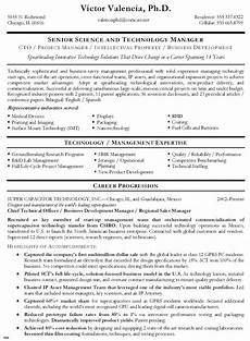 Professional Or Technical Skills For Resume Chief Technical Officer Resume Resume Examples Download