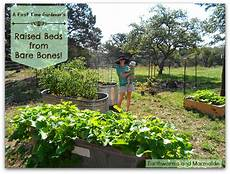 earthworms and marmalade raised beds from bare bones and