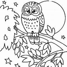 Malvorlagen Traumvilla Malvorlage Eule Kinder X13 Ein Bild Zeichnen
