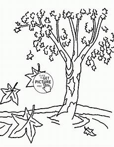 fall tree coloring pages for nature printables free