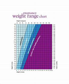 Fetal Growth Chart During Pregnancy Baby Weight Growth Chart Template 5 Free Pdf Documents