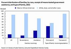 Welfare Distribution By Race Chart In America Spending Patterns Of Families Receiving Means Tested