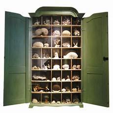 joyce cabinet of curiosities