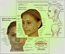 Face Reflexology Chart Charts Iridology Reflexology Acupressure Etc