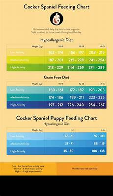Puppy Food Chart By Age Cocker Spaniel Feeding Guide Cocker Spaniel Spaniel