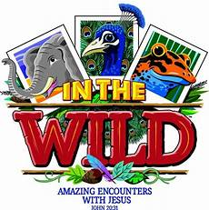 Lifeway Vbs Lifeway 2019 Vbs Quot In The Wild Quot Ministry To Children