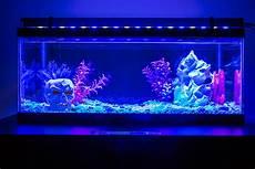 Best Aquarium Lights 36 Quot High Power Led Aquarium Light Fixture Led Aquarium
