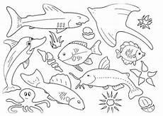 Fische Malvorlagen Zum Ausdrucken Noten Ausmalbilder Zum Ausdrucken Fische Https Www