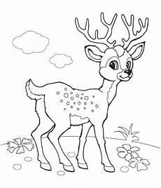Malvorlagen Tiere Kostenlos Runterladen Sch 246 Ne Ausmalbilder Malvorlagen Tiere Ausdrucken 2