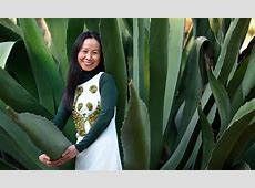 WWF National Council member Winnie Lam on innovation