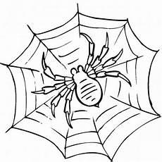 Malvorlagen Spinnen Spinne Ausmalbilder Malvorlagentv
