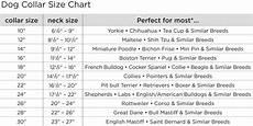 Seresto Dog Collar Size Chart Rio Martingale Leather Dog Collar Angel Pet Supplies
