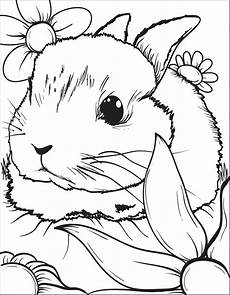 printable bunny rabbit coloring page for 3 supplyme