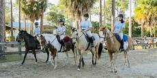 Casperey Stables 187 Leg Up Horse Camp