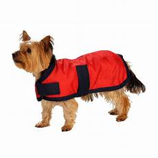 dogs coats winter coat rescue rugs
