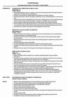 Director Of Sales Resume Director Global Sales Resume Samples Velvet Jobs