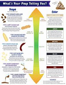 Stool Color Chart Human What Your Is Trying To Tell You Chart Included