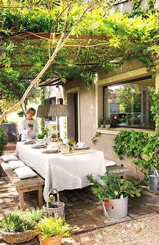 plantas penduradas ao ar livre enredaderas y plantas trepadoras 30 propuestas para