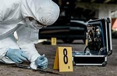 Investigation Jobs Duties Amp Responsibilities For A Crime Scene Investigator