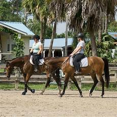 Casperey Stables 187 Services