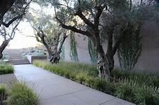 Schmidt Landscape Design Img 0633 Jpg Landscape Landscape Design Winery