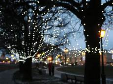 Tree Lights 16 Reasons You Need To Plant More Trees Revolutionary
