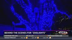 Jacksonville Fl Zoo Christmas Lights Zoolights Is Back This Week At The Jacksonville Zoo And