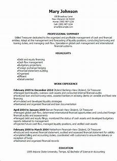 Assistant Treasurer Cover Letter 1 Treasurer Resume Templates Try Them Now Myperfectresume