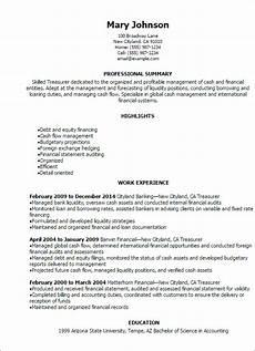 Treasury Resume 1 Treasurer Resume Templates Try Them Now Myperfectresume