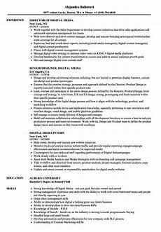Digital Media Resume Digital Media Resume Samples Velvet Jobs